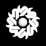 Logo Idiran
