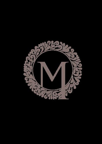 Medisatech-logo
